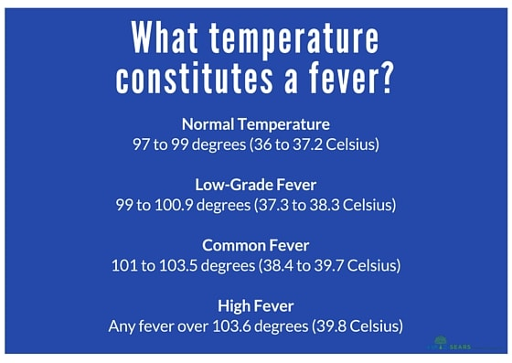 How To Treat Low Grade Adult Fever 8