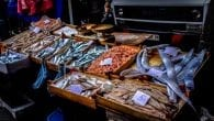 Seafood market euro eel shrimp