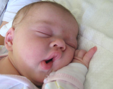 Dr. Sears Addresses Recent Co-Sleeping Concerns | Ask Dr Sears®