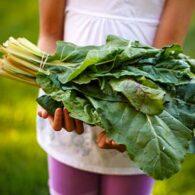 vegan-diet-for-children