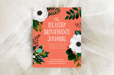 promotion for The Healthy Motherhood Journal
